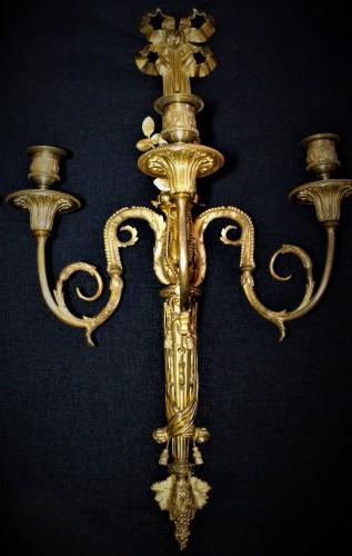 Grande paire d'appliques fleuries Louis XVI à trois branches