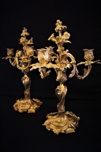Paire de bougeoirs candélabres en bronze doré